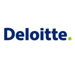 Deloitte Bursary Program